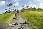 Ubud: E-Biketour zu den Reisterrassen von Tegallalang Tour
