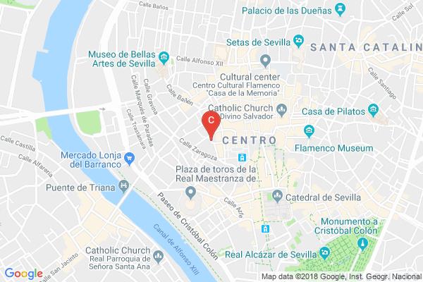 Black-Swan-Hostel-Sevilla.jpg