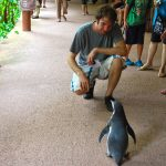 Gregor mit Pinguin